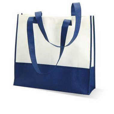 Bolsa de la compra o playa